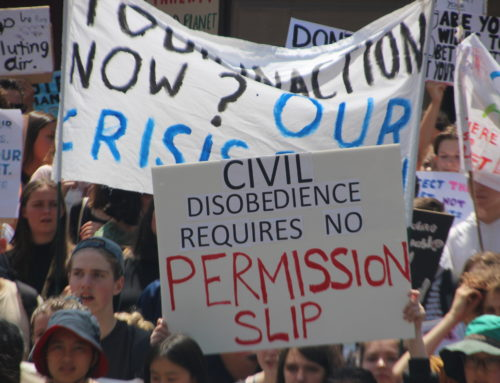 Civil Disobedience and the Separation of Powers