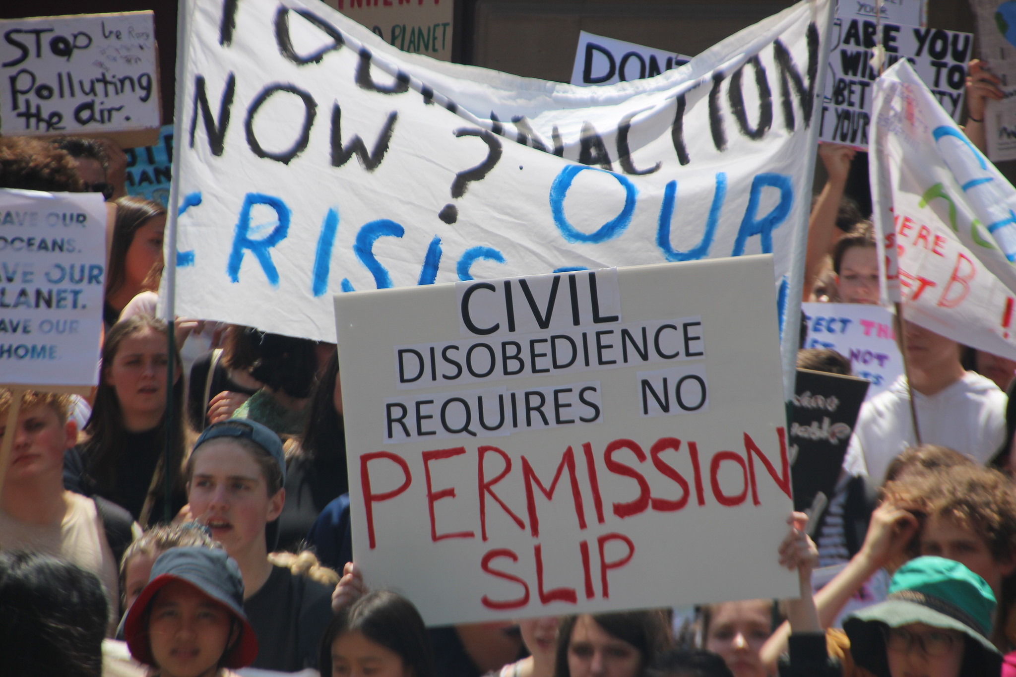 Civil Disobedience and the Separation of Powers – Political Animal Magazine