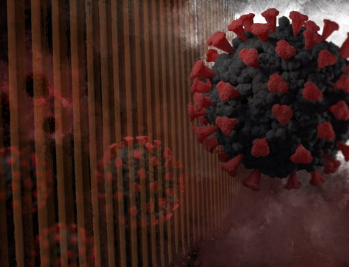 Being without Borders: examining popular philosophies of illness and the biopolitics of pandemic